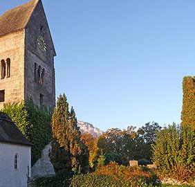 Blick zur Kirche in Anif