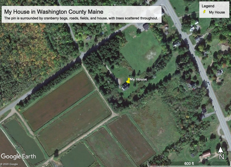 This is a Google Earth image of the area surrounding the house I grew up in and currently live in today. In the picture, you can see some woods and scattered trees, but fields and cranberry bogs are what is primarily surrounding the house.