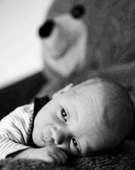 Newborn Fotoshooting in Mönchengladbach
