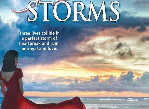 Book Recommendation | Heart Storms by @ncsamuelson #99cents #womensfiction #romance #bookish
