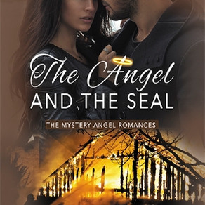 Book Review | The Angel and the SEAL by @authorpetie #bookreview #romanticsuspense #militaryromance