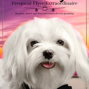 Book Review | My Name Is Bacci Bogie: Frequent Flyer Extraordinaire by Sandra Glosser @baccibone1 #b