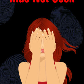 Book Review   Hide Not Seek by @DEHaggerty #cozymystery #romance #bookreview