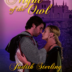 Book Review | Night of the Owl (The Novels of Ravenwood, Book Four) by Judith Sterling and @WildRose