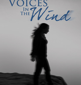 Love #Mystery and #Suspense? The Wind Series by Judy Bruce is Addictive and a Must-Read! #books #boo