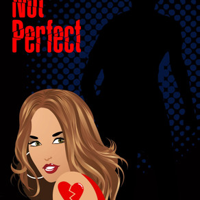An easy fun read that will appeal to any fan of mystery novels! Picture Not Perfect by @dehaggerty #