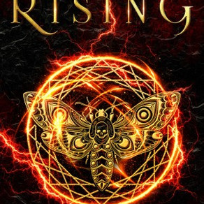 """""""Its unexpected originality made me an instant fan"""" Analiese Rising by @brendadrake #yalit"""