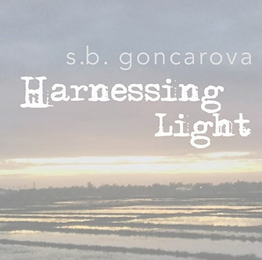 Book Recommendation | Harnessing Light by @studiogoncarova #poetry #nonbinary #bookish