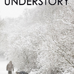When Nobody Loves You, You Have Nothing to Lose... Understory by  @lisajlickel #suspense #bookreview