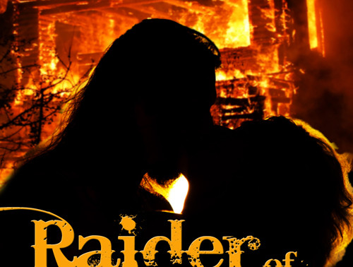 Raider of Her Heart by @njadegray1 is a New Year New Books Fete Pick #giveaway #timetravel