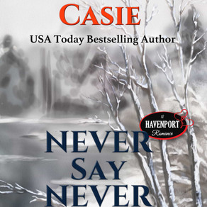 Never Say Never by @RuthACasie is a Cozy Mystery Event pick #cozymystery #giveaway #mystery