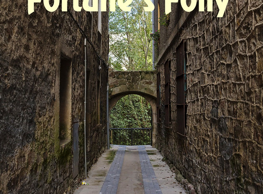 Fortune's Folly by @CatDubie is a Snuggle Up Readathon Pick #historicalfiction #romanticfiction
