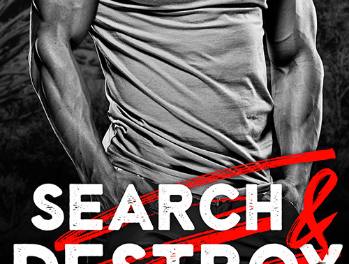 Search and Destroy by Award-Winning @JulieRoweAuthor is a Binge-Worthy Book Festival Pick #romantics
