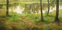 «Лесное озеро»