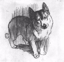 «Пёс»