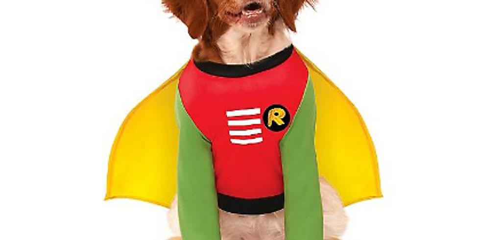 Howl-o-ween Dog Costume Parade