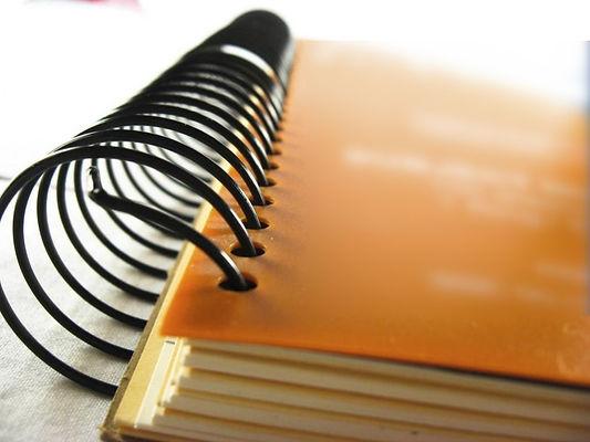 DG CONSEIL, écrivain public, conseil en écriture : Rapports de Stage