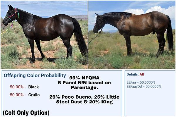 PicsArt_09-11-11.39.18.jpg