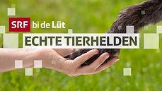 SRF bi de Lüt – Echte Tierhelden