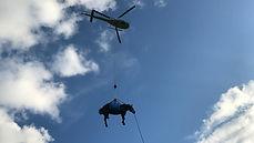 Reparatur: Einsatzfahrzeuge des Grosstier- Rettungsdienstes