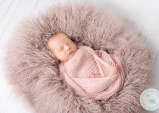 North Sydney Newborn Photography / 1 week old girl