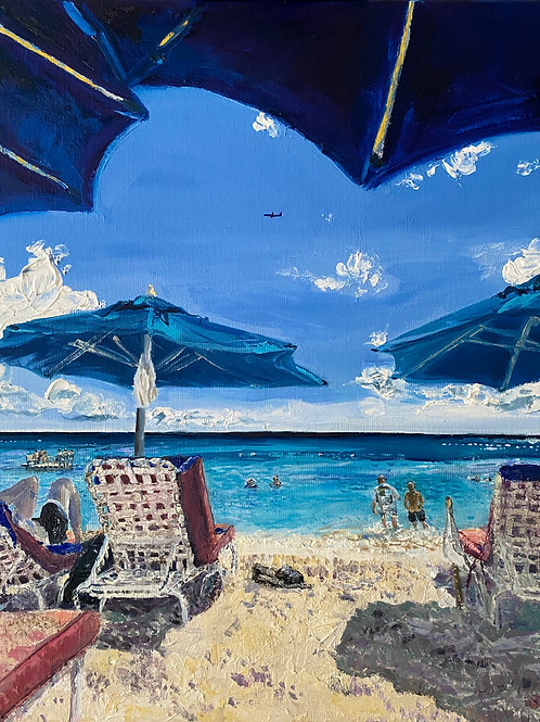 Water Borne Hedonism- Mullins Beach, Barbados