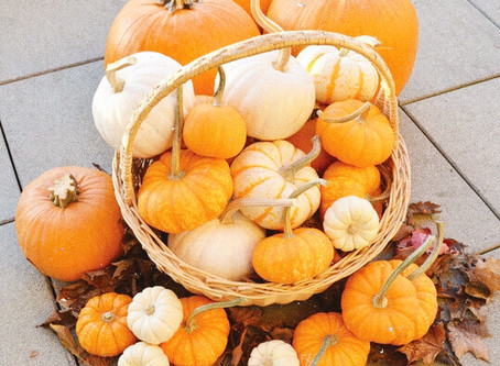 All things Fall: Autumnally Creative with Pumpkins