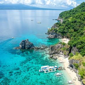 link)Apo Island, Negros Oriental, Philippines  - Diving