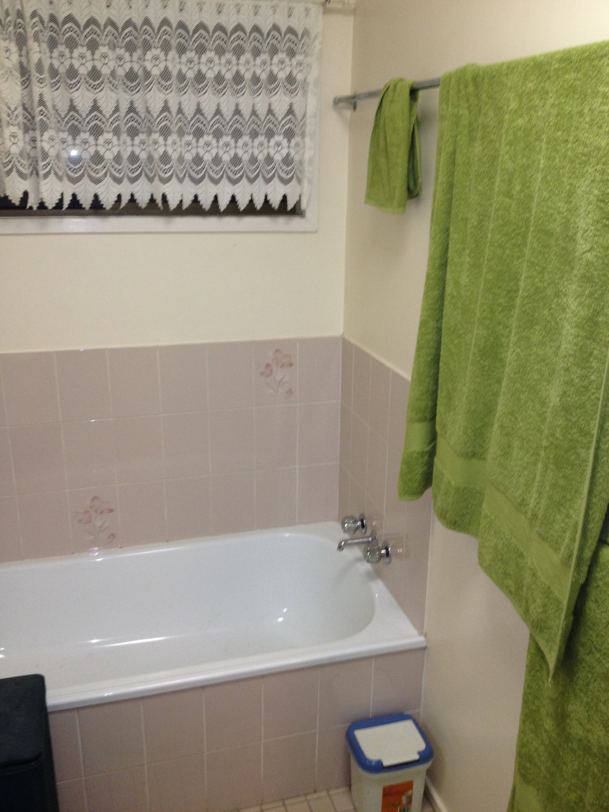 bath area before