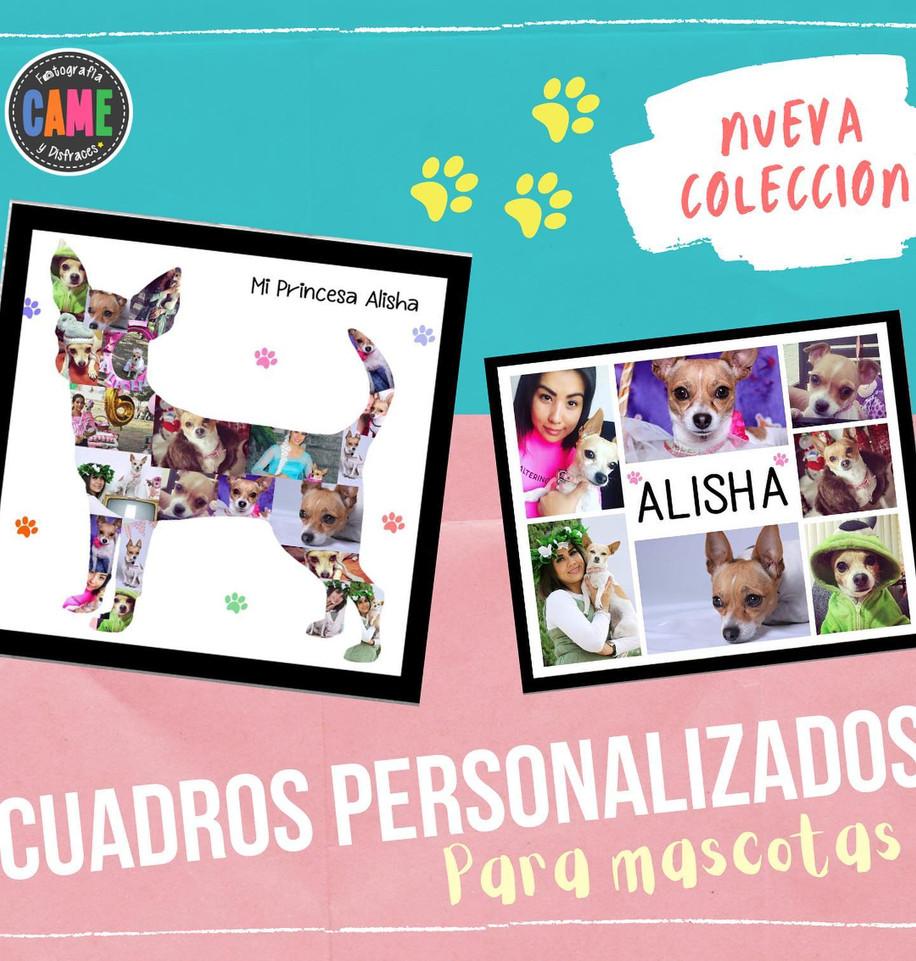 Nueva Colecciòn de Cuadros Personalizados para tus Mascotas!