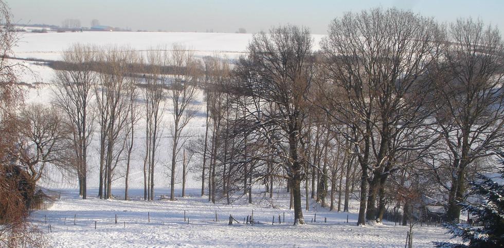 Leversbach im Winter V.JPG
