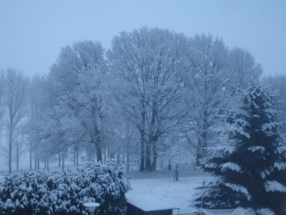 Leversbach im Winter III.JPG