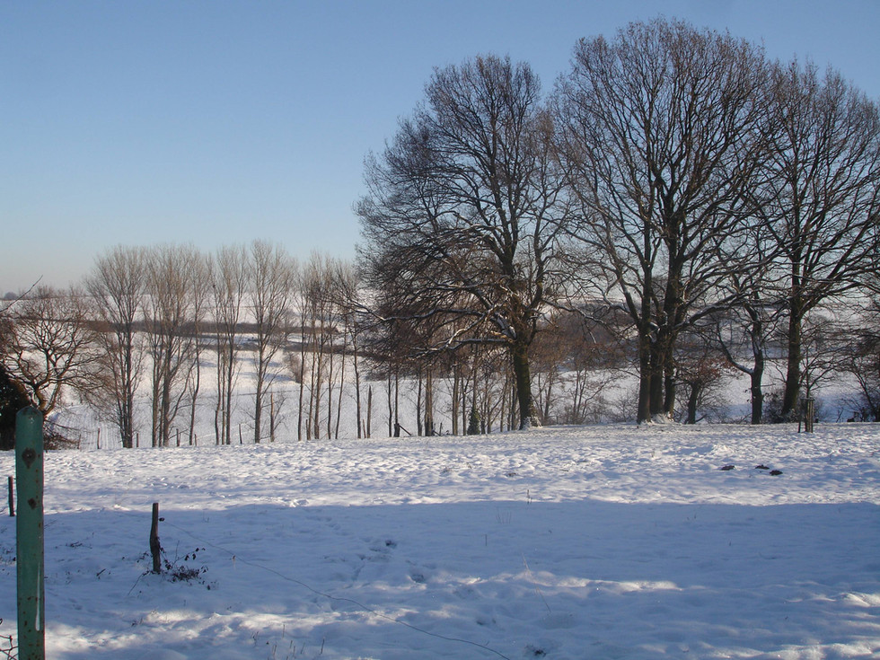 Leversbach im Winter VI.JPG