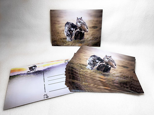 Postkarte (Koani mit Uhu)