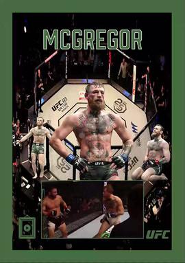 UFC Legend
