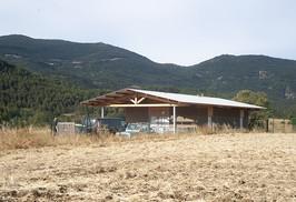 Salle d'abattage