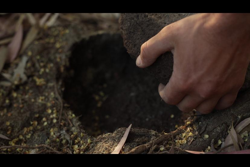 בחירת אבן מתווי הנחל המתאימה לתבנית (צילם: יוסי מויאל)