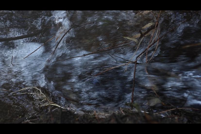 קטע מנחל מחניים (צילם: יוסי מויאל)