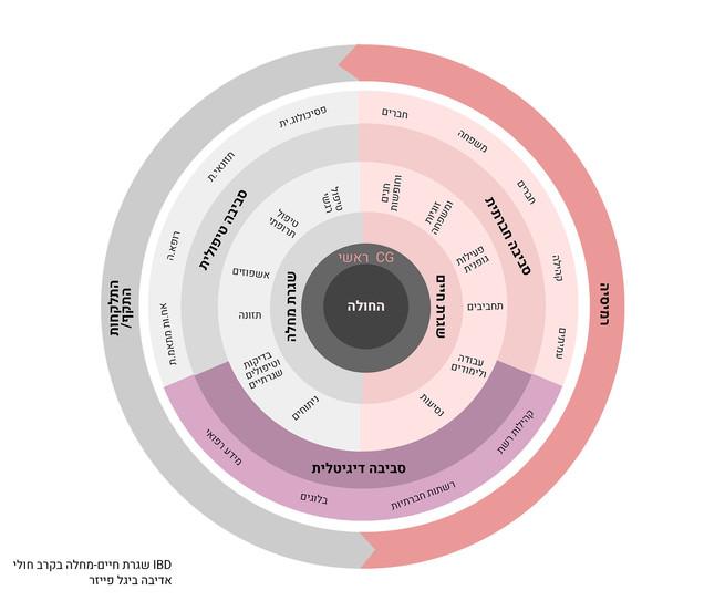 שגרת חיים מול שגרת מחלה - מחלות מעי דלקתיות, מתוך המחקר האקדמי.