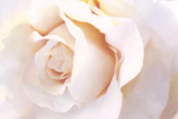 Grace Rose