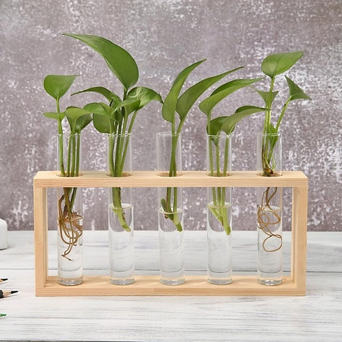 Glass and Wood Vase Planter Terrarium Table Desktop Hydroponics Plant