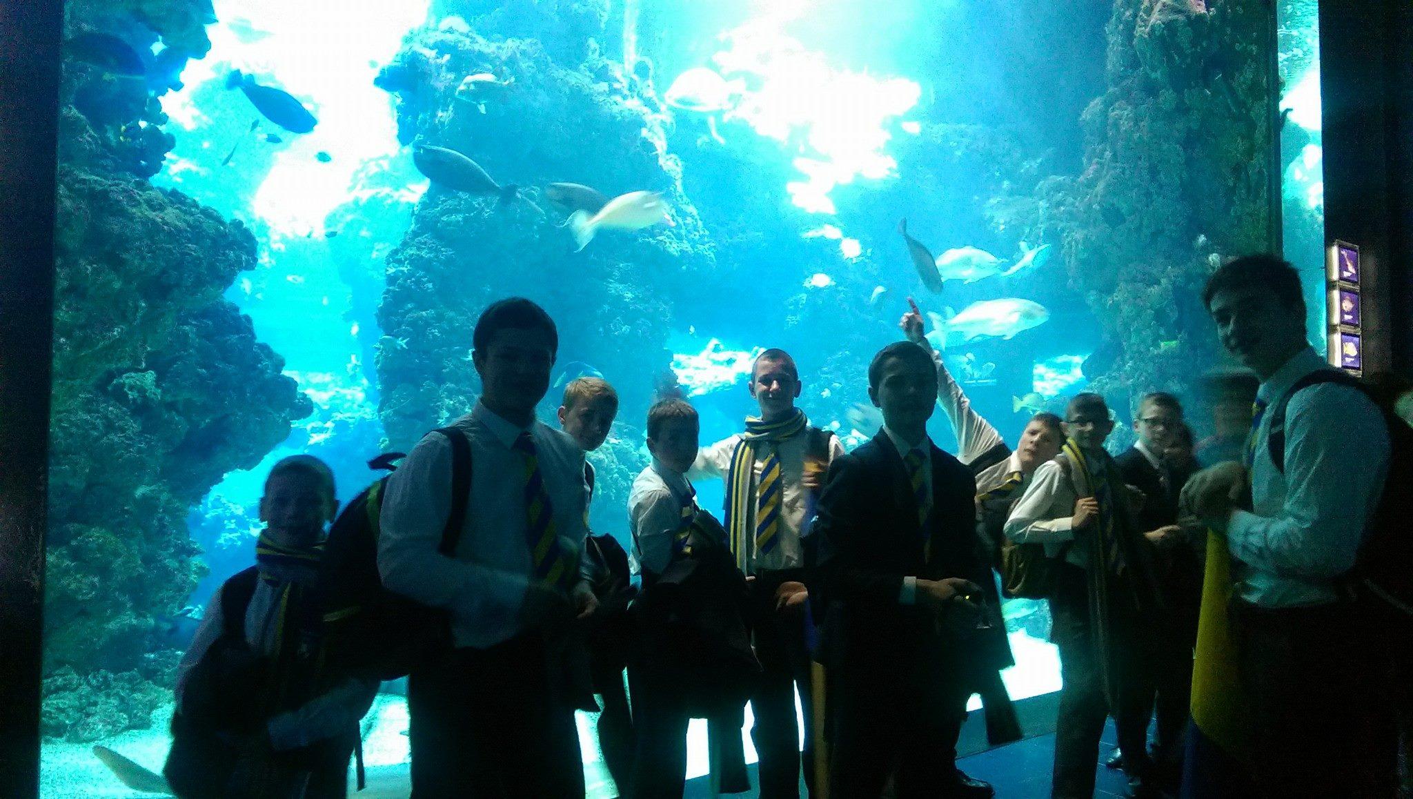 A l'aquarium de Monaco