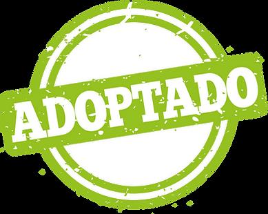 adoptado.png