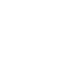 motore_300_A.png