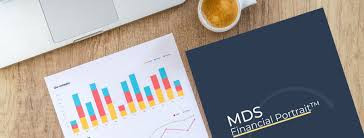 My Divorce Solutions MDS Financial Portrait