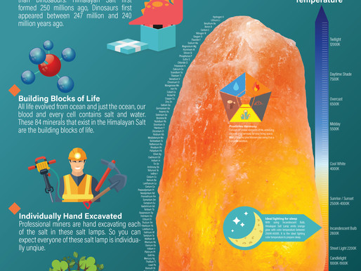 Salt Lamps Infographic