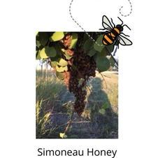 Simoneau Honey Buzziness