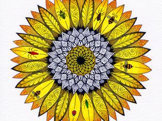 Sunflower coloured