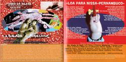 nissa pernambuco 13-14