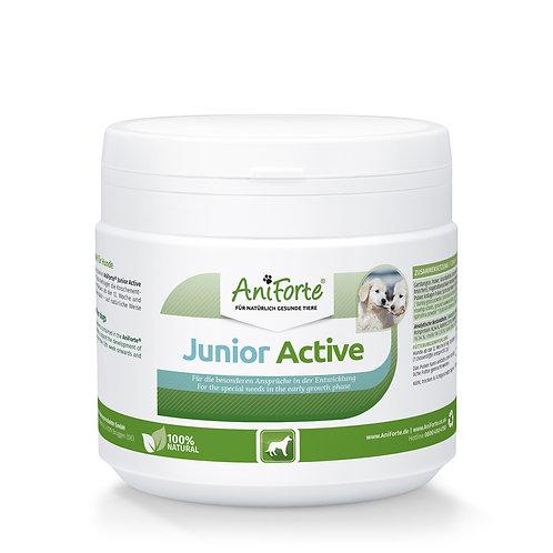 ANIFORTE Junior Active per cuccioli e cani giovani